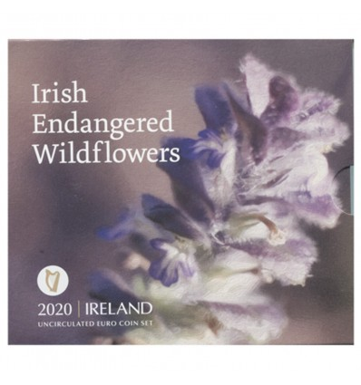 Série B.U. Irlande 2020