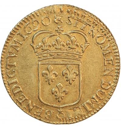 Louis à l'Ecu - Louis XIV