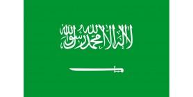 Ryal  -  Arabie Saoudite  -  SAR